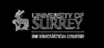 university of survey